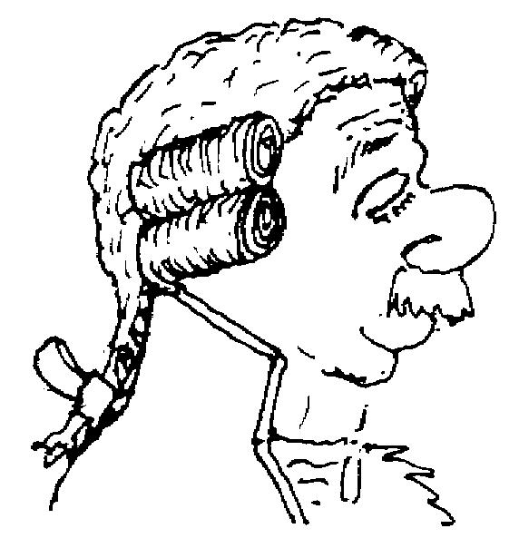 Sketch of a Peruke